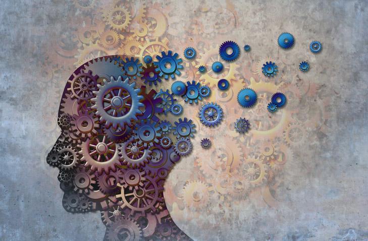 התפקודים הניהוליים של המוח: הקורס המעשי